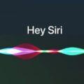 Siri Anti Fraude